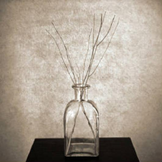 cunningham_david_morris_01_glass_bottle_with_three_twigs.jpeg.w300h300