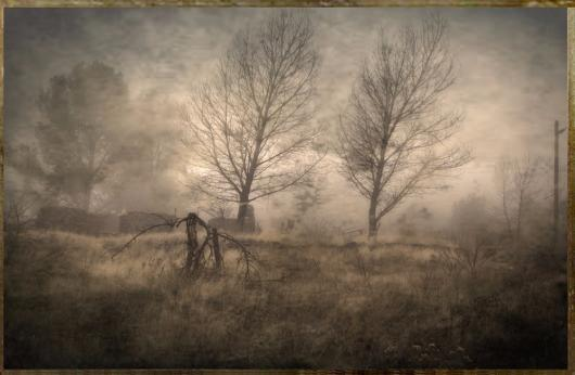 garth_marguerite_the-forsaken-11