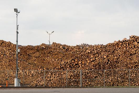 UPM Log Yard