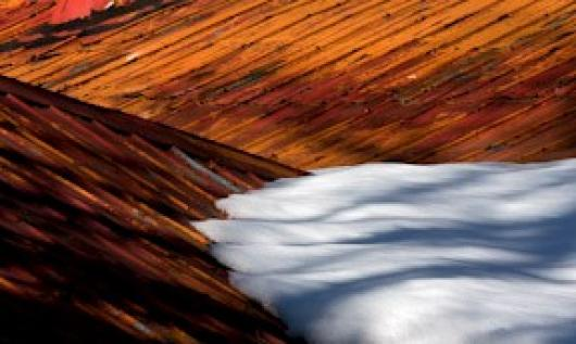 AbouNader_Paul_3RooftopSnow