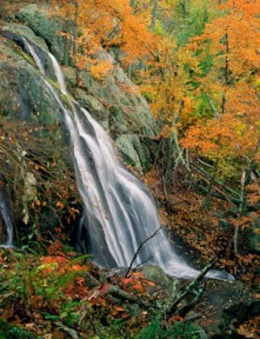 Johnston_JW_2DarkHollowFalls-Autumn