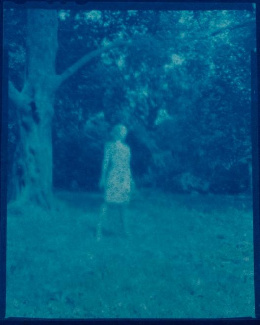 KELLY_CHRISTIAN_4 GHOST OF PROSPECT PARK FRAME 3_ PINHOLE PHOTO- CYAN-O-TYPE- JUNE 2011